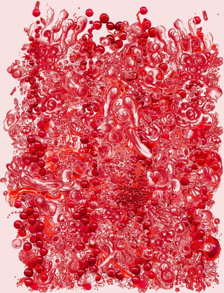 Geerten Ten Bosch, bessen / berries  ,                               ,